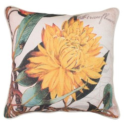 Strawflower Cushion 45x45cm